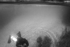 Unterwasserfoto Echinger Weiher