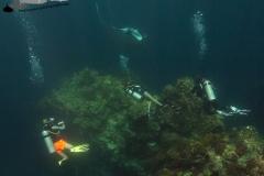 Unterwasserfoto Taucher